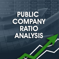 Financial Analysis - Public Company